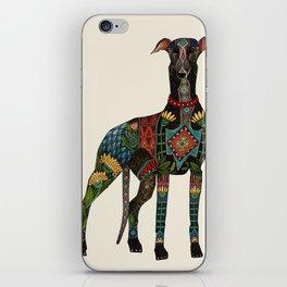 greyhound ivory iPhone Skin