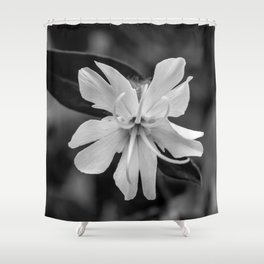 Black and white, white cockle Shower Curtain