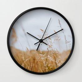 A Golden Desert - Point Reyes Grasses Wall Clock