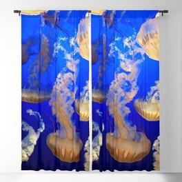Sea Nettles Blackout Curtain