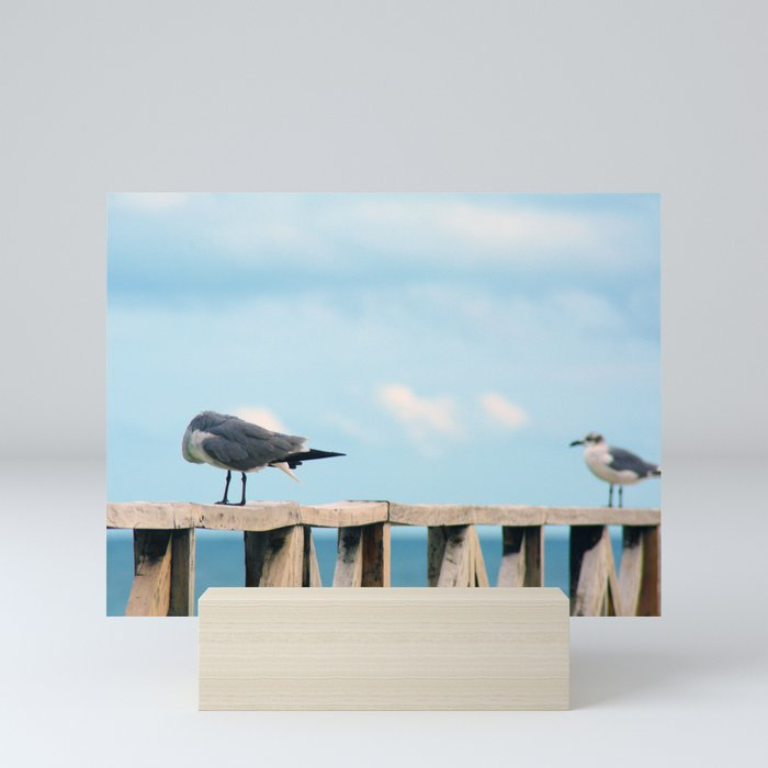 Bird collection _02 Mini Art Print