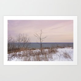 Scarborough Bluffs in Winter on December 27th, 2020. V Art Print