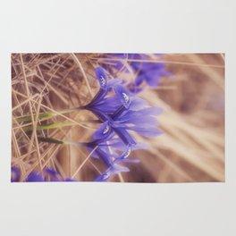 Small Iris Rug