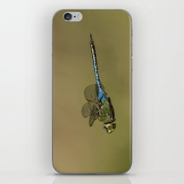 Dragonfly Fly-by iPhone Skin