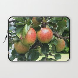 Juan's tree Laptop Sleeve