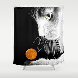 Silver Cat and Moon Shower Curtain
