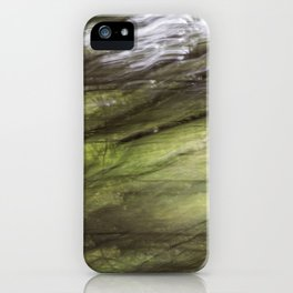 blurred perception of nature #2 iPhone Case
