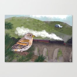 The Flying Car Canvas Print