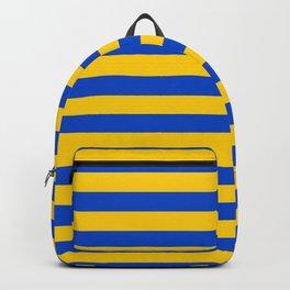 Asturias Sweden Ukraine European Union flag stripes Backpack