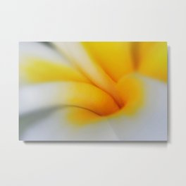 Plumeria Macro Abstract Metal Print
