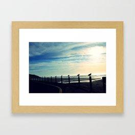 Gulls in a row Framed Art Print