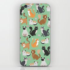 Cats cats cats iPhone & iPod Skin