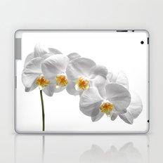 orchid classic II Laptop & iPad Skin
