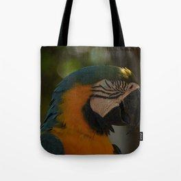 colors2 Tote Bag