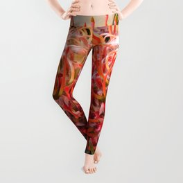 Pin wheel Protea Leggings