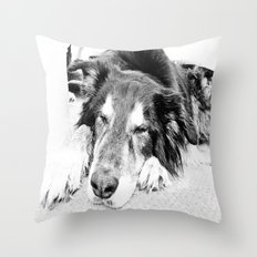 Tired Old Dog Throw Pillow
