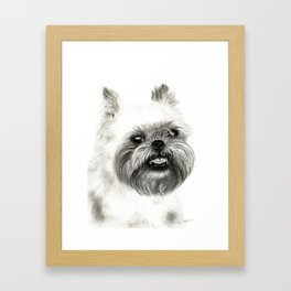 Brussels Griffon Drawing Framed Art Print
