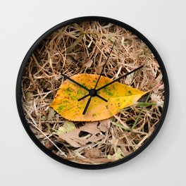 Yellow leaf on the ground Wall Clock