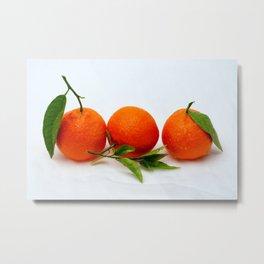 Three tangerine fruits Metal Print