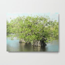 An Island of Trees Metal Print