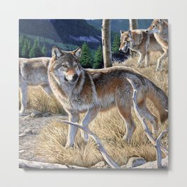 Wolf in winter forest Metal Print