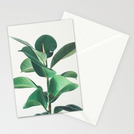Rubber Fig Stationery Cards