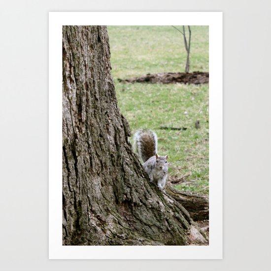 peeking squirrel Art Print