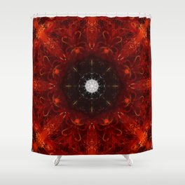 Festive Window Mandala Abstract Design Shower Curtain