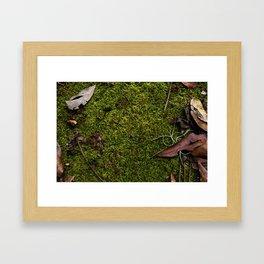 Mossy Plot Framed Art Print