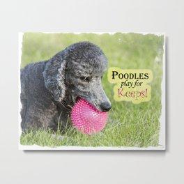 Poodles Play For Keeps Metal Print