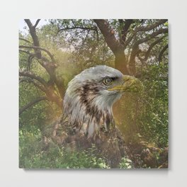 Magic Animals HAWK Metal Print