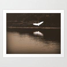 Perfect Landing Art Print
