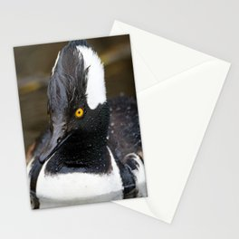 Wet Little Hooded Merganser Stationery Cards