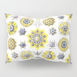 Ernst Haeckel - Polycyttaria Pillow Sham