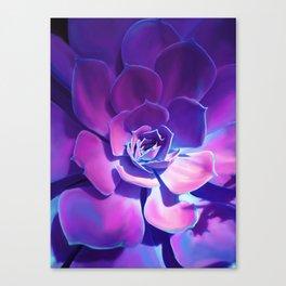 MOONLIGHT SUCCULENT Canvas Print