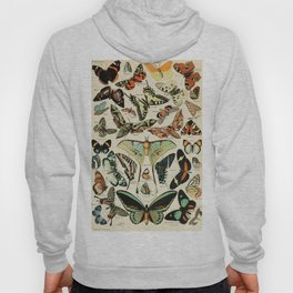 French Vintage Butterflies Chart Adolphe Millot Papillons Larousse Pour Tous Poster  Hoody