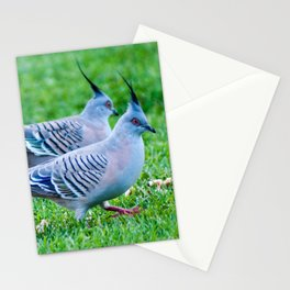 Pair of Crested Turtle Doves Stationery Cards