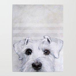 Schnauzer original Dog original painting print Poster