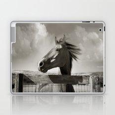 In the Wind Laptop & iPad Skin