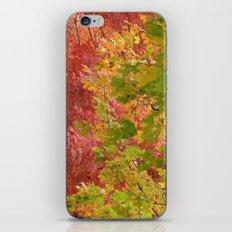 Fall stroll  iPhone & iPod Skin