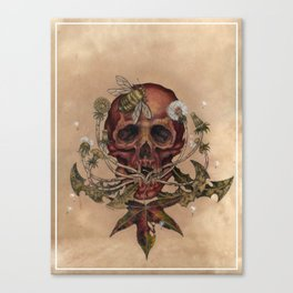 Skull with Bee Canvas Print