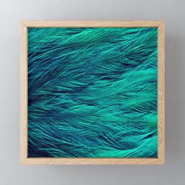 Teal Feathers Framed Mini Art Print