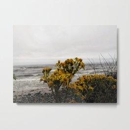 Cape Meares Metal Print