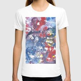 July Fireworks T-shirt