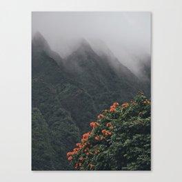 Beyond The Fog Canvas Print