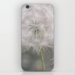 Soft Wishes iPhone Skin