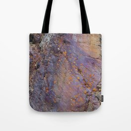 Colors of the Earth Tote Bag