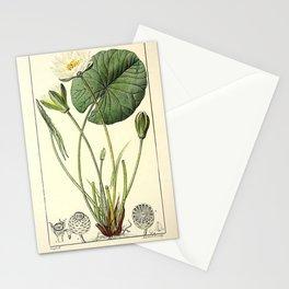 Flower nenuphar (Fr)3 Stationery Cards