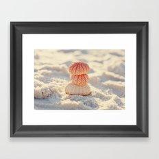 Sea Urchins Framed Art Print