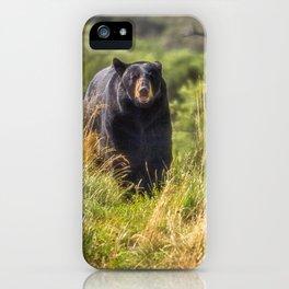 Running Bear iPhone Case